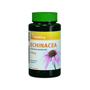 Vitaking Bíbor kasvirág - Echinacea kivonat 90x